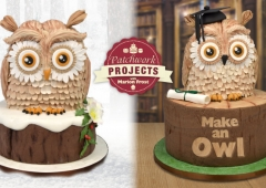 Make an Owl (DVD)